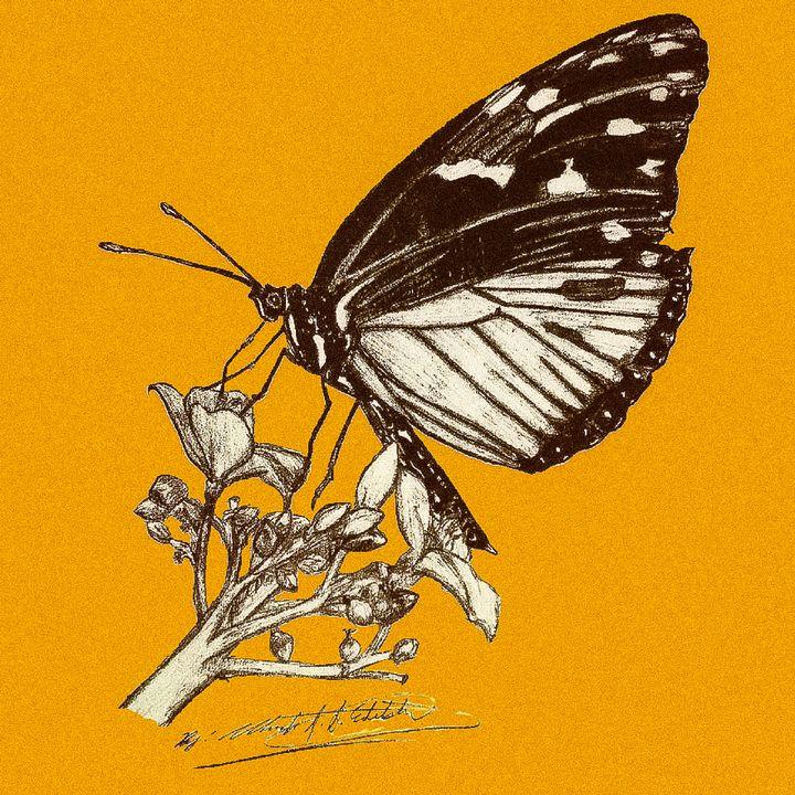 Collecting Pollen - WolfDagger369