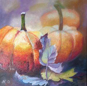 pumpkin harvest (2019)
