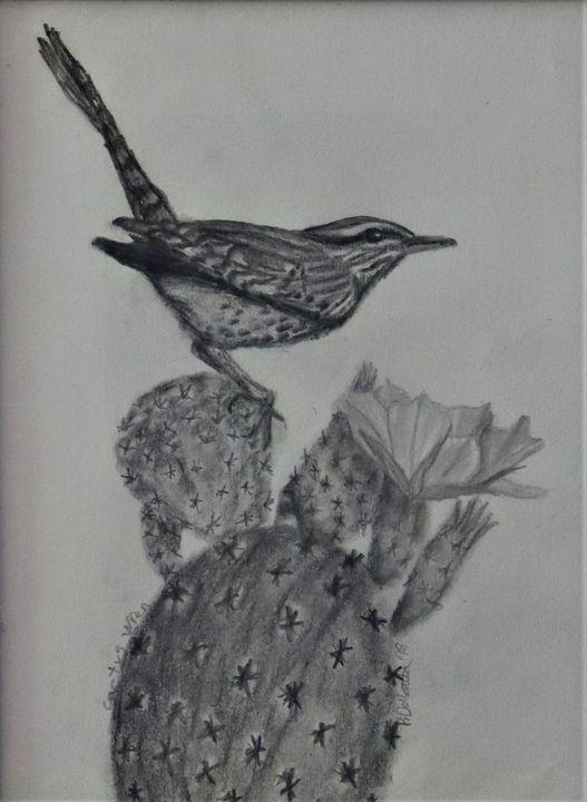 Cactus Wren - Wild Bird Art Gallery