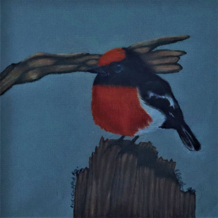 Red-Capped Robin - Wild Bird Art Gallery