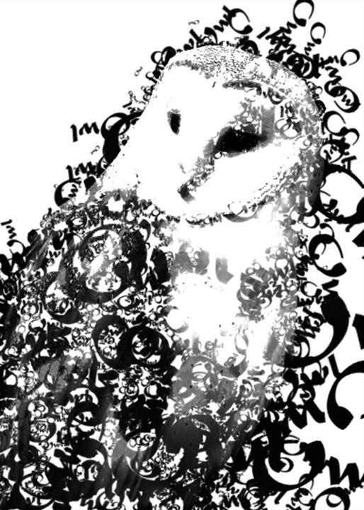 Typographic Owl - Kyanite Designs