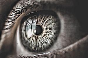 Eye-See - Brondre4601