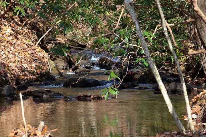creek - Preus Photography