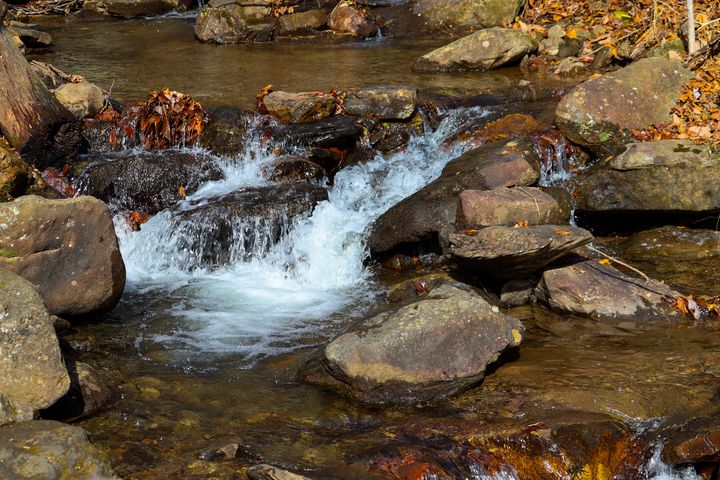 creek in fall - Preus Photography