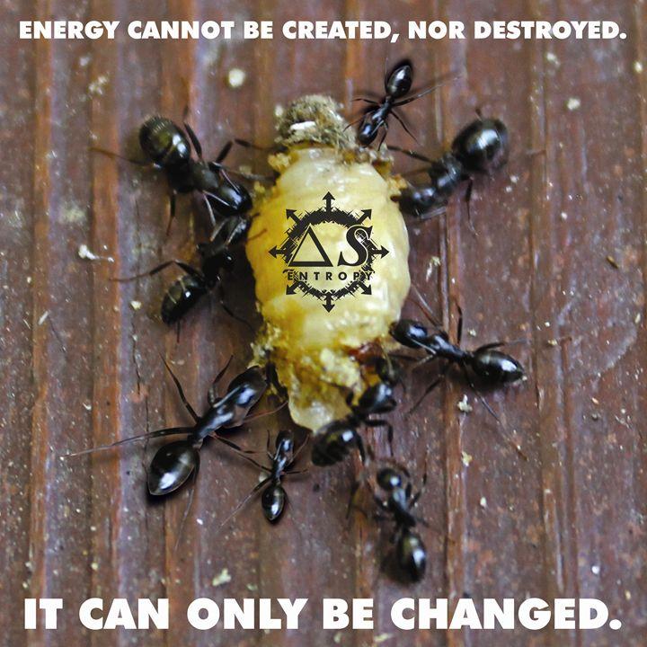 The Change - ENTROPY