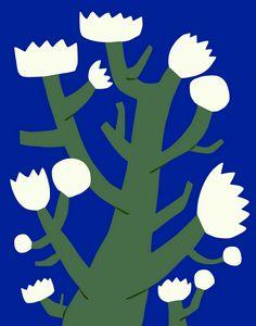 White bloom tree