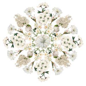 White flower Mandala - Jocelyn Chemel