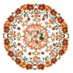 Orange flower mandala - Jocelyn Chemel