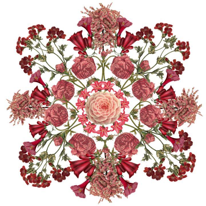 Red Mandala - Jocelyn Chemel
