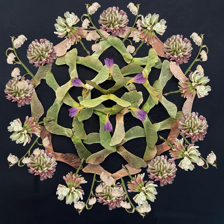 Whirly Mandala - Jocelyn Chemel