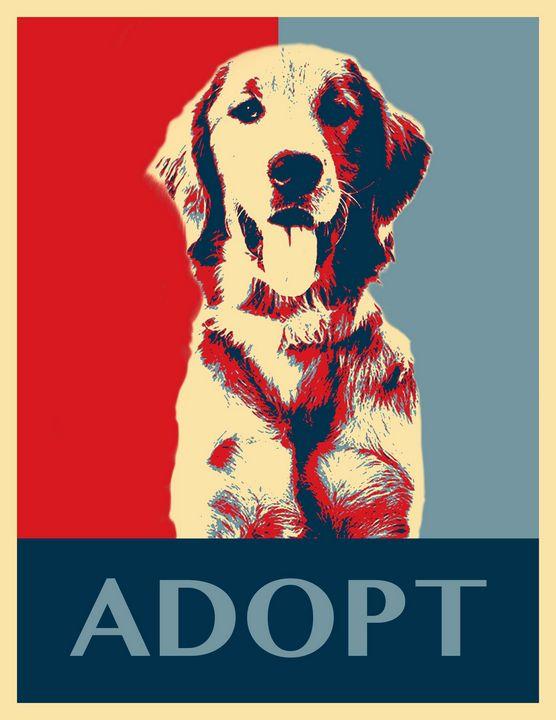 Hope for Adoption - Shannon MacFarlane Photography