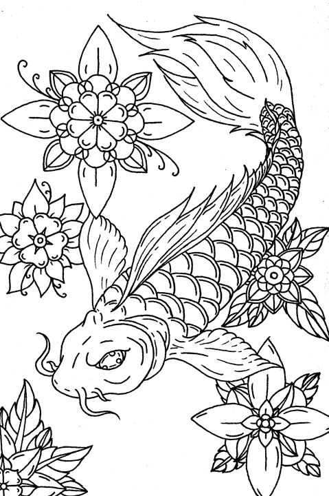 Koi Study - Parlour Illustration
