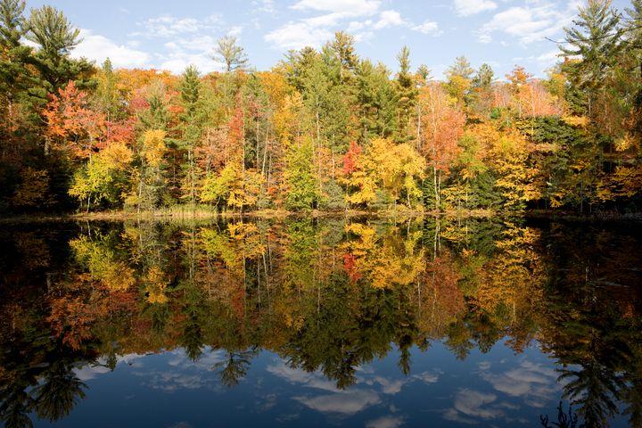 Autumn Reflections - James Netz Photography