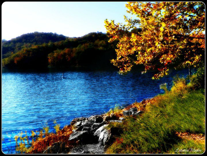 Fall Lake - Latanya Maples Art