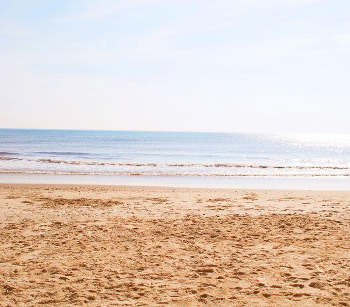 Ocean view - Alyssa Evans