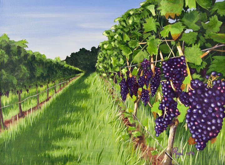 Vineyard No 1 - Angelo Pietrarca