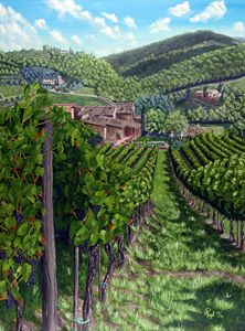 Vineyard In Tuscany - Angelo Pietrarca