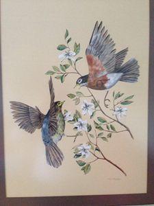 Two Australian birds: Paul Margocsy
