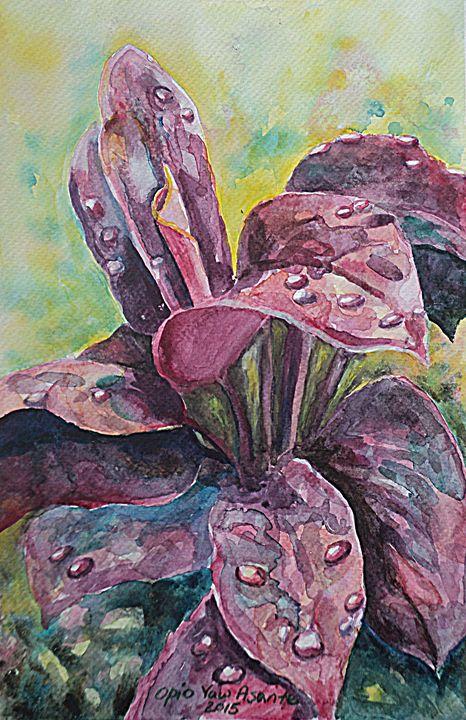 Mother Earth 4 - Opio Yaw Asante