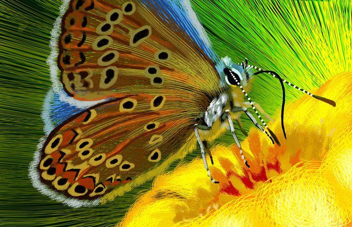 Butterfly - Opio Yaw Asante