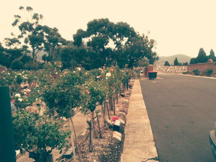 Cemetery -  Lanna_fewkes2011