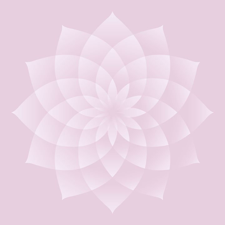 Thousand Petal Lotus in Pink - Attila Meszlenyi