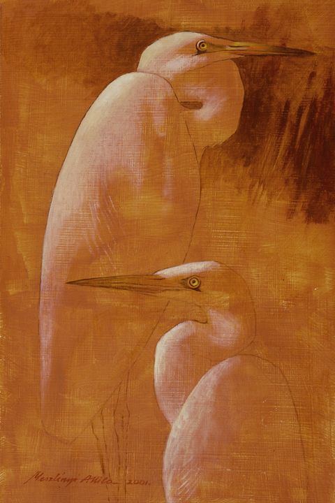 Egrets - Attila Meszlenyi