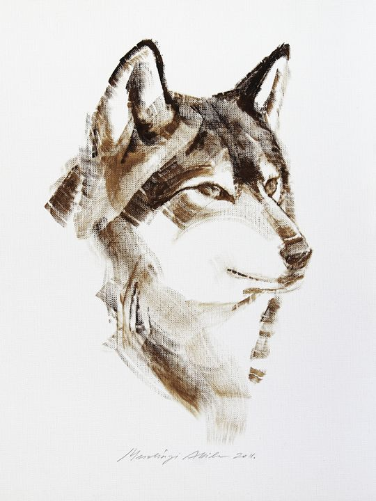 Wolf Head Brush Drawing - Attila Meszlenyi
