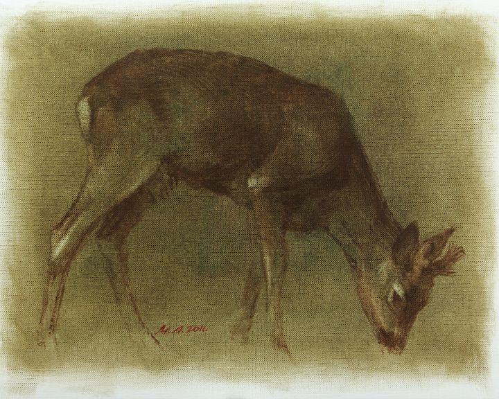 Grazing Roe Oil Painting - Attila Meszlenyi