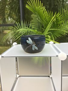 Dragonfly ceramic plant holder $27.0