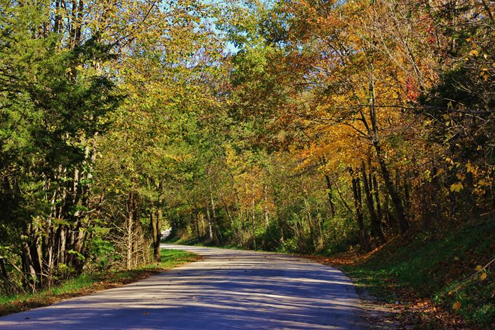 Natures Path - Ryan Earl