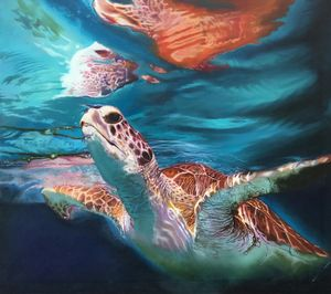 turtle cozumel