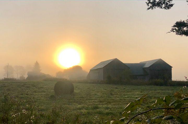 Misty Morning - Chris Dippel