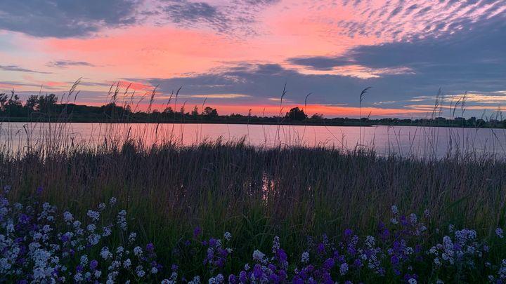 Kingston Sunset - Chris Dippel