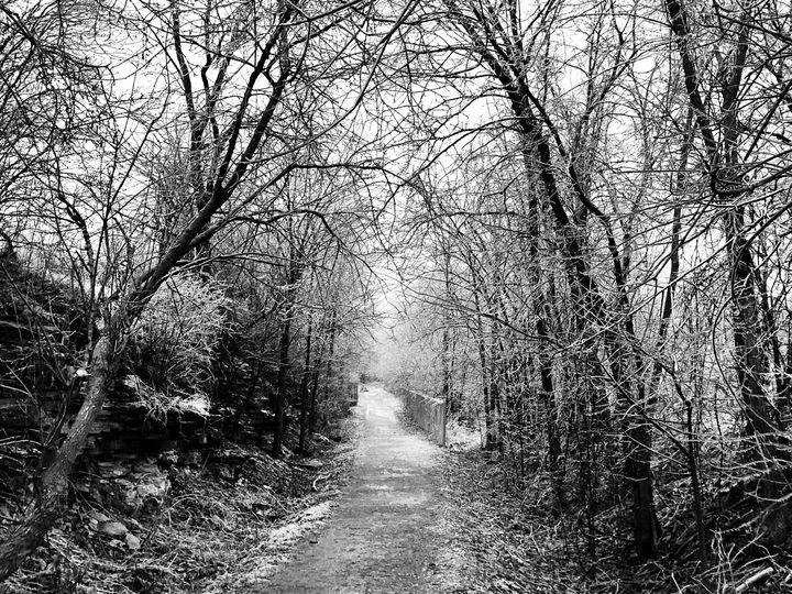 The Frozen Path - Chris Dippel