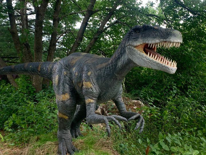 Allosaurus - Chris Dippel