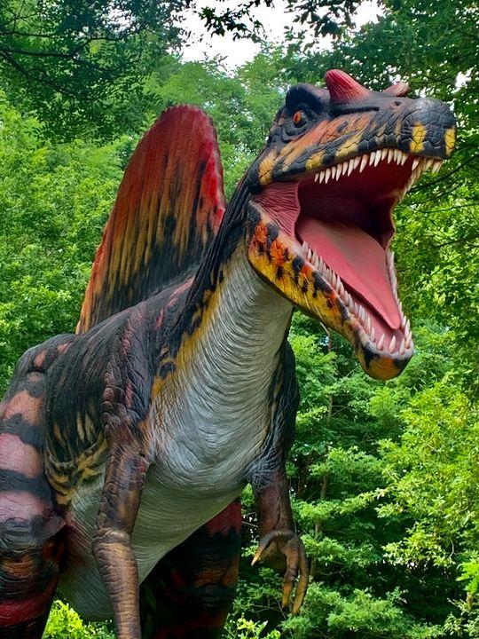 Spinosaurus - Chris Dippel