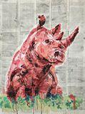 Red Rhino.