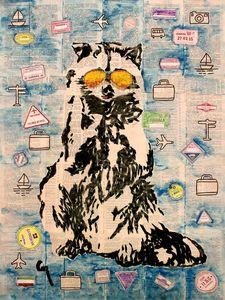 Raccoon traveler .