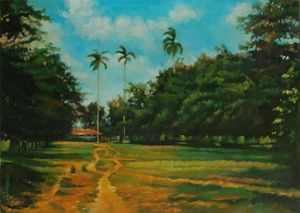 Cuban landscape, path with palms