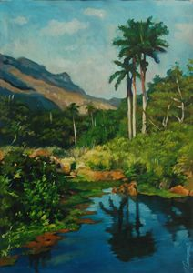 Cuban River and Trees