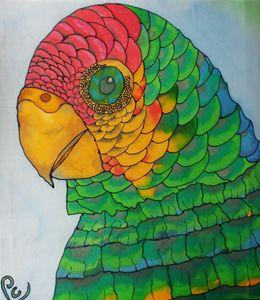 Parrot Shadel