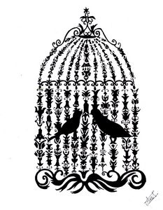 two love birds in cage