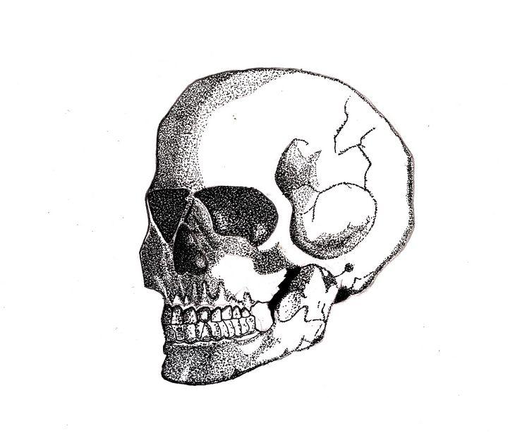 skeletal skull - Aksh