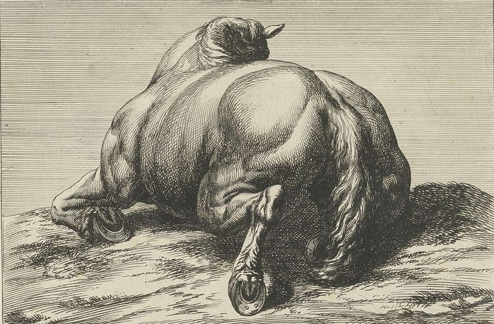 Huchtenburg~Gesneuveld paard op de b - Classical art