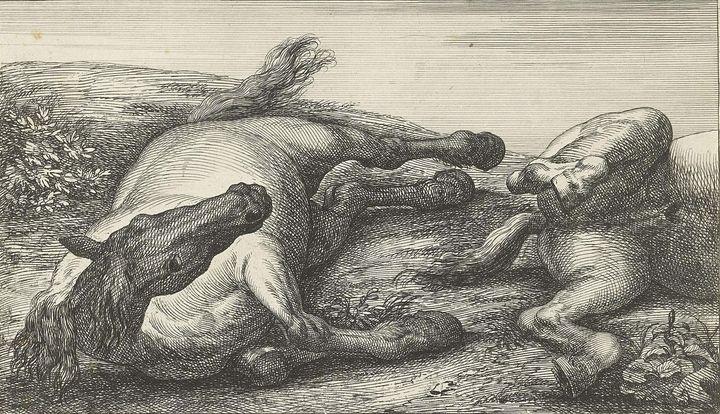 Huchtenburg~Twee gesneuvelde paarden - Classical art