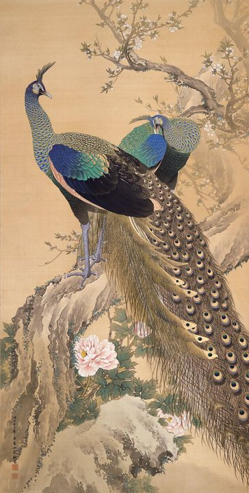 Imao Keinen~A Pair of Peacocks in Sp - Classical art