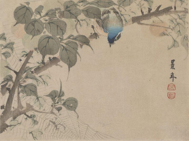 Imao Keinen~Bird And Spider Net - Classical art