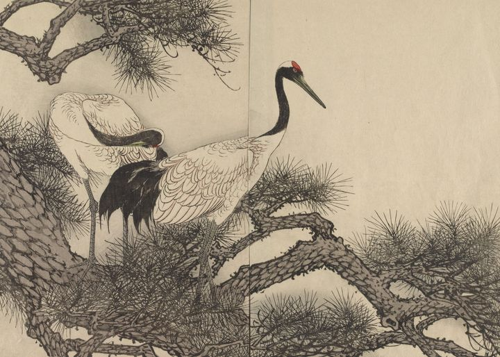 "Imao Keinen~Cranes Page From ""Keinen - Classical art"