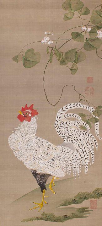 Itō Jakuchū~Hanging Scroll (white ro - Classical art